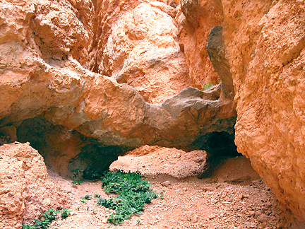 Unnamed Arch 04, Sunset Point, Bryce Canyon National Park, Utah