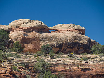 Snout Arch, Salt Creek Pocket, Needles District, Canyonlands National Park, Utah