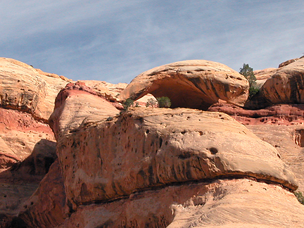 Turtle Arch, West Fork Lavendar Canyon, Canyonlands National Park, Utah