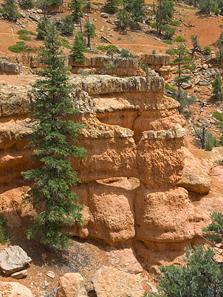 Appetizer Arch, Losee Canyon, Garfield County, Utah