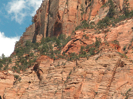 Bridge Mountain Arch, Bridge Mountain, Zion National Park, Utah